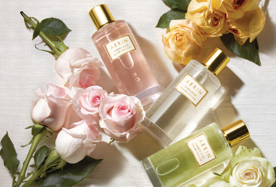 Aerin's Rose Garden Collection